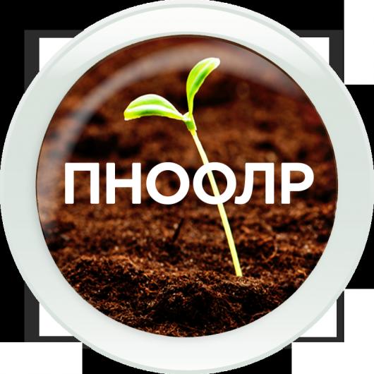 ПНООЛР Проект нормативов образования отходов и лимитов на их размещение