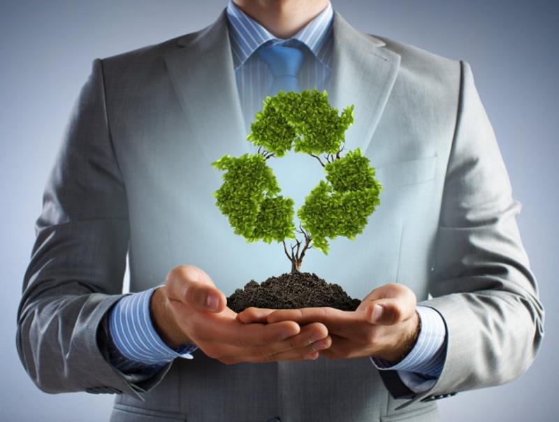срок проведения экологической проверки