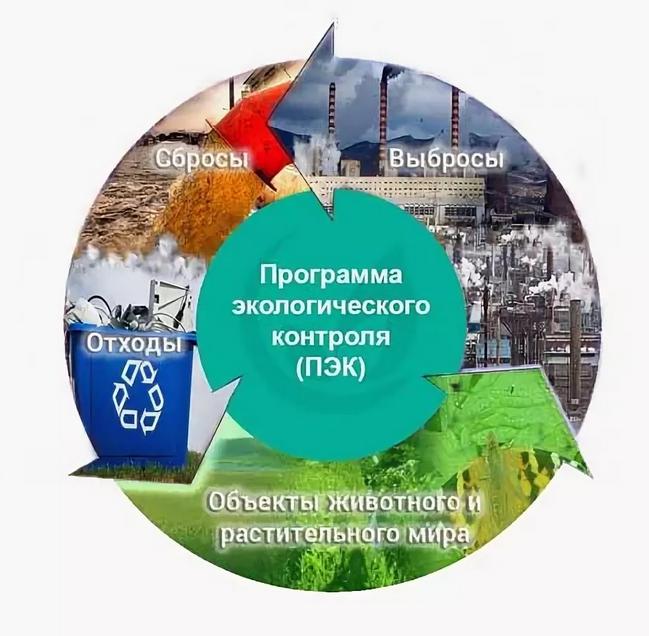 проверка экологической безопасности