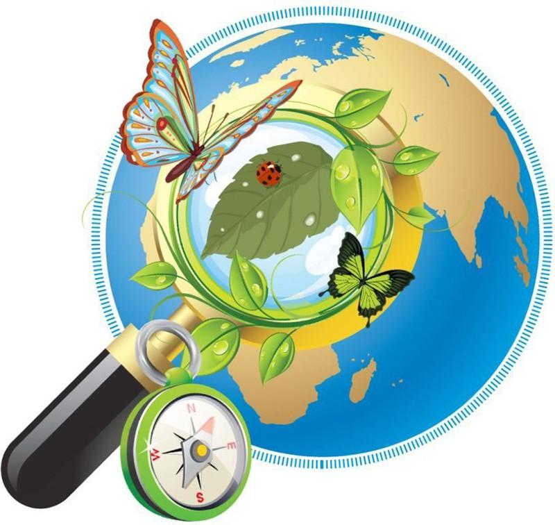 курсы по экологической безопасности
